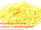 Новое изображение  Пыльца сосны, Горная кавказская, Урожай 2016г! 36228050 в Красноярске