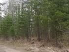 Изображение в Недвижимость Земельные участки Продам земельный участок для ценителей леса, в Красноярске 350000