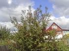 Скачать фотографию Сады Продам дачу западное направление 39733040 в Красноярске