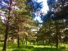 Увидеть foto Земельные участки Продам участок к лесу с фундаментом 72244315 в Красноярске