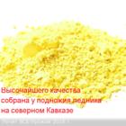 Пыльца сосны, горная кавказская, урожай 2016г