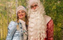 Дедушка Мороз и Снегурочка на дом