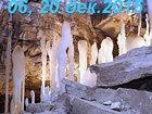 Изображение в   Приглашаем на увлекательную экскурсию в мир в Перми 800