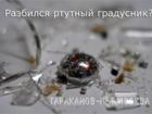 Уникальное фото  Что делать если разбился ртутный градусник или энергосберегающая лампа? 34805151 в Москве