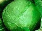 Просмотреть фото  Картофель и овощи от производителя, 36590809 в Барнауле