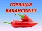Изображение в   Работа рекламно-информационного характера. в Санкт-Петербурге 35000