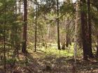 Скачать изображение  Срочно земля Киевское море, лес 12 соток, Ясногородка от хозяина 39088659 в Кургане