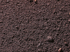 Уникальное фото  Торф с доставкой по Перми и краю 39767136 в Перми