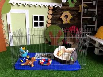 Смотреть изображение  Вольеры для собак и щенков 38829049 в Кемерово
