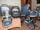 Просмотреть изображение Продажа собак, щенков коляска 3в1 Verdi Max 32806953 в Курске