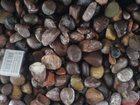 Изображение в   громадный выбор различных природных камней в Курске 5