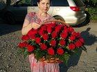 Скачать foto Растения Розы в Липецке 33288555 в Липецке
