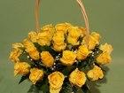 Смотреть изображение Растения розы дешево в липецке 38644856 в Липецке