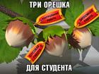 Новое фотографию Курсовые, дипломные работы Контрольные, курсовые, дипломы на заказ - все направления! 33626920 в Минске