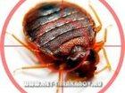 Изображение в Услуги компаний и частных лиц Разные услуги Уничтожение мукоедов, муравьев, тараканов, в Москве 1500