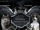 Скачать бесплатно фотографию Услуги для животных Частный крематорий для животных Кремень 34880245 в Москве