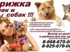 Фото в Услуги компаний и частных лиц Разные услуги Предлагаем к вашему Вниманию! свои услуги в Москве 100