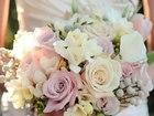 Скачать бесплатно foto  FIESTA-Организация свадеб, праздников, банкетов 36938616 в Москве