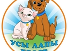 Фото в Домашние животные Услуги для животных Готовы покупать большим оптом - ежемесячно! в Москве 0