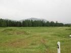Фото в Недвижимость Земельные участки Продам участок 15. 7 га, земли сельхозназначения в Новосибирске 1800000