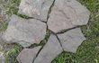 Камень Дракон серо-зелёный природный Песчаник