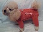 Фотография в Собаки и щенки Одежда для собак Предлагаю недорогую вязаную на спицах одежду в Москве 0