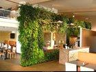 Фотография в   Студия фитодизайна GardenCity, предлагает в Москве 0
