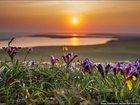 Смотреть изображение  Экскурсионные услуги по Крыму 33012289 в Анапе