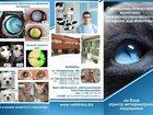 Изображение в   Лечение глаз животных Ростов-на-Дону:  Внимание в Ростове-на-Дону 0