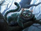Свежее фотографию  Стрижка собак, стрижка кошек в Зеленограде 33860819 в Москве