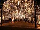 Фото в Услуги компаний и частных лиц Разные услуги Выполним монтаж электрического освещения в Москве 250