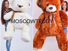 Просмотреть фотографию  Плюшевые медведи оптом от производителя 34042050 в Москве
