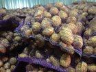 Скачать бесплатно изображение  Картофель оптом от производителя! 34477039 в Городце