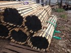 Новое foto Строительные материалы Труба нержавеющая э/с Ф16х0,5 AISI 304 мерная 3 метра, 35859705 в Москве