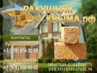 Уникальное изображение  Ракушечник крымский 36644247 в Краснодаре