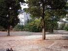Изображение в   Продам земельный участок в г. Ялта (Дубки). в Ялта 7800000