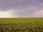 Изображение в Недвижимость Земельные участки Участок 290 га. Цена 35 тыс. руб за Га.  в Москве 10150000