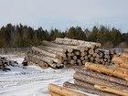Скачать бесплатно foto  Лес на корню, Кругляк (пиловочник), Пиломатериалы, 38869469 в Нижневартовске