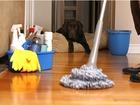 Фотография в Услуги компаний и частных лиц Помощь по дому Генеральная и поддерживающая уборка квартир в Москве 3000