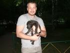 Просмотреть изображение Услуги для животных Выбор щенка 39546403 в Москве
