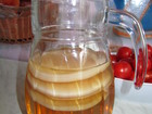 Уникальное foto Отдам даром - приму в дар Чайный гриб - довольно распространенный напиток, Его приятный вкус и несомненная польза привлекают многих, 40091472 в Москве