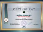 Новое фото  Реализую рассаду суперкрупноплодной клубники, 40704244 в Воронеже