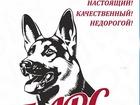 Свежее фотографию  Сухой корм премиум класса для взрослых собак 52121499 в Самаре