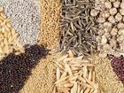 Скачать изображение  Оптовая продажа зерна и кормов для сельскохозяйственных животных 57563628 в Москве