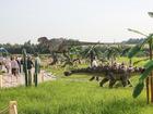 Свежее фото  Экскурсия в парк динозавров 66511946 в Рыбинске