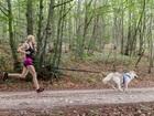 Новое фотографию  Ошейники и поводки, шлейки, халти для собак 67873440 в Орле