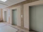 Скачать изображение Аренда жилья Квартира в современном жилом комплексе у Московской 68711105 в Санкт-Петербурге