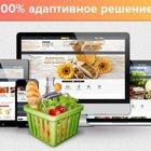 Создание продающего интернет-магазина