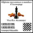 Обучение шахматам и шашкам в Зеленограде