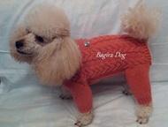 Одежда для собак и кошек Bagira-Dog Предлагаю недорогую вязаную на спицах одежду